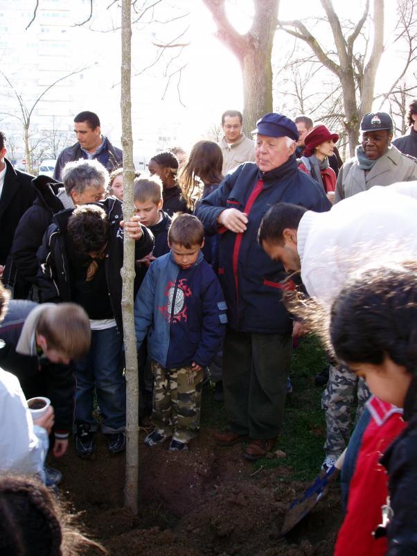 Plant le 12 mars 2008 l arbre de la solidarit est - Cabinet de recrutement reims ...